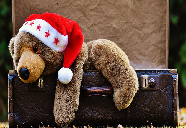 christmas teddy modesto